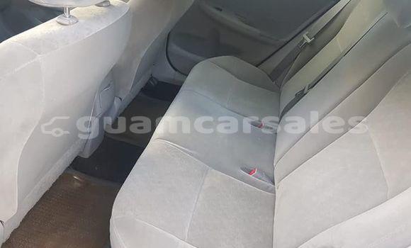 Buy Used Toyota Corolla White Car in Dededo in Dededo