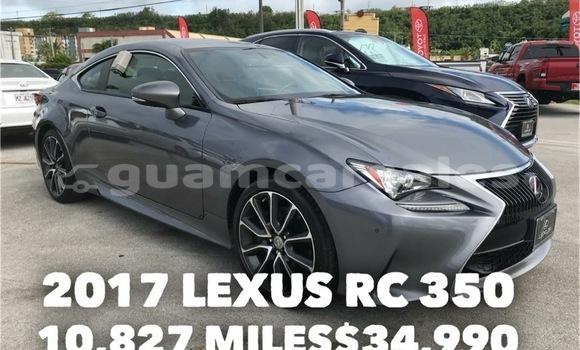 Buy New Lexus RX 350 Other Car in Tamuning in Tamuning