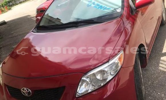 Buy Used Toyota Corolla Red Car in Dededo in Dededo