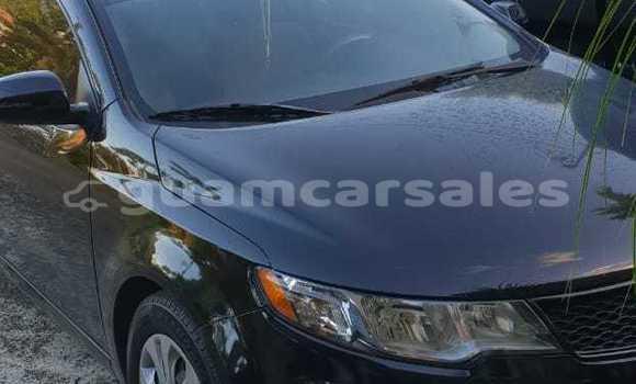 Buy Used Kia Forte Black Car in Agana in Hagatna