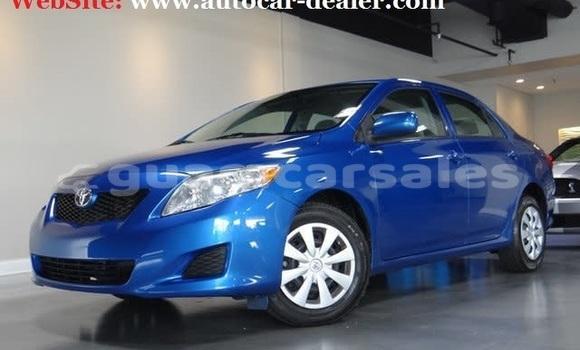Buy Used Toyota Corolla Other Car in Hagåtña in Hagatna